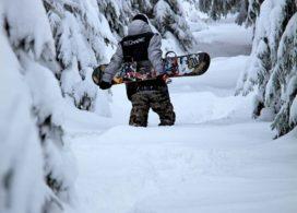 1 Uvodka-oriznuta, zasnezene stromy + snowboardista